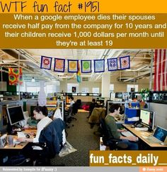 WTF Fun Facts is updated daily with interesting & funny random facts. We post about health, celebs/people, places, animals, history information and much more. New facts all day - every day! Wtf Fun Facts, True Facts, Funny Facts, Random Facts, Crazy Facts, Happy Facts, Strange Facts, Random Stuff, Movie Facts