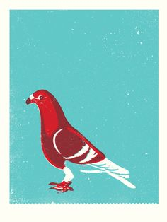 pigeon art print by two arms inc. $20