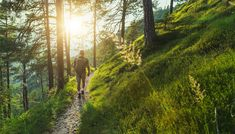 The ultimate antithesis to modern life? Norway's new soul-soothing, time-travelling pilgrimage Norway News, Journey, Forest Service, Weekend Breaks, Backpacking Tips, Sunset Photos, National Forest, Hiking Trails, Hiking Gear