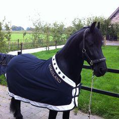 Eddy's new jacket ;-)