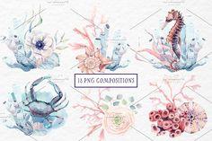 SEA TREASURES Watercolor set - Illustrations - 3