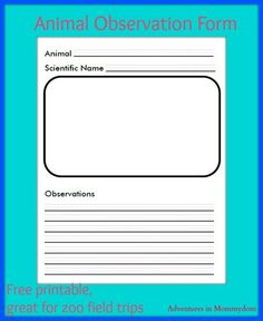 zoo animal observations form for field trips from Adventures in Mommydom Preschool At Home, Preschool Lessons, Science Lessons, Teaching Science, Teaching Tools, Zoo Activities, Girl Scout Activities, Educational Activities, Girl Scout Juniors