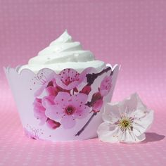 Cherry Blossom Cupcake Wrappers (set of 12)