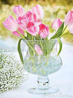 Tulips in vase by Sonbeam, via Dreamstime