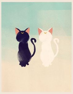 One day I will have a black cat and a white cat. Ill let you figure out what there names will be ^_^