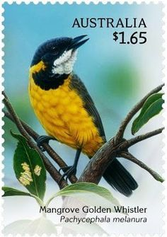 Mangrove Golden Whister (Pachycephala melanura) Sweet Song Birds from Australia Rare Stamps, Vintage Stamps, World Birds, Postage Stamp Art, Australian Birds, Fauna, Stamp Collecting, Pet Birds, Google Search