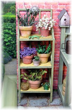 mini garden shelves