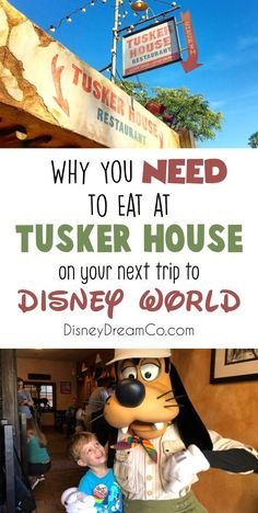 If you have never been to Tusker House at Animal Kingdom before in Disney World, then toy NEED to! This Disney World restaurant is great for the whole family! It is a character dining buffet, and the food here is amazing! Disney World dining. Disney World tips and tricks. Disney World planning. Disney aesthetic. Animal Kingdom restaurants. Disney World restaurant reviews. Animal Kingdom Restaurants, Disney World Restaurants, Walt Disney World Vacations, Dining At Disney World, Disney World Food, Disney Dining, Disney On A Budget, Disney Vacation Planning, Disney World Planning