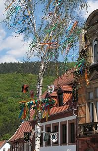 Festivals in Germany - and great reference for all things German!