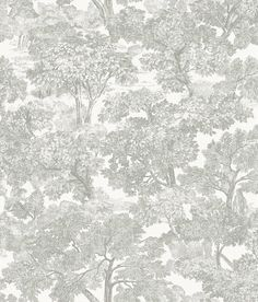Spinney Grey Toile Brewster Wallpaper Wallpaper Brewster Wallcoverings Grays Whites Floral & Plants Wallpaper Toile Wallpaper, Coated Heavyweight Paper, Easy to clean , Easy to wash, Easy to strip Teal Toile Wallpaper, Plant Wallpaper, Paper Wallpaper, Wallpaper Online, Wallpaper Roll, Wallpaper Borders, Farmhouse Wallpaper, Brewster Wallpaper, Wallpaper Warehouse