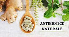 Nigella, Natural Remedies, Natural Home Remedies, Natural Medicine