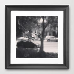BB Hole in the Window Framed Art Print by ADH Graphic Design - $40.00