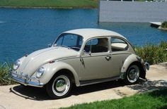 Image result for volkswagen BEETLE 1300 1969