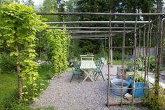 Erika Åberg's garden
