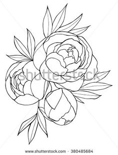 Image result for botanical flowers free black and white