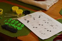 Animal Study- Animal Tracks (Introductory Lesson, Book, Activity Worksheet)