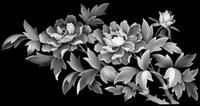 Flower20033 Zbrush Tutorial, 3d Tutorial, Alpha Art, Grayscale Image, 3d Panels, 3d Cnc, 3d Laser, Adult Coloring Pages, Laser Engraving