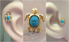 Turquoise Turtle Gold Cartilage Tragus Earring Turtle Earrings, Turtle Jewelry, Body Jewelry, Jewelry Box, Jewelery, Tragus Piercings, Cartilage Earrings, Unique Body Piercings, Aromatherapy Jewelry
