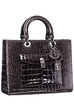 Dior Crocodile Bag 2014 Fall-Winter
