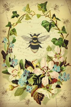 Bountiful Heirlooms: Free Printables: Birds, Bees, Bugs, and Wreaths Vintage Bee, Vintage Cards, Vintage Paper, Vintage Prints, Vintage Ephemera, Vintage Labels, Printable Art, Free Printables, Paper Art