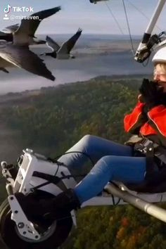 This is Amazing! 😍- This is Amazing! Flying with geese! Funny Animal Videos, Cute Funny Animals, Cute Baby Animals, Nature Animals, Animals And Pets, Beautiful Birds, Animals Beautiful, Amazing Nature, Beautiful Creatures