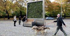 Inquinamento: CityTree, parete verde rimuove polveri sottili e CO2