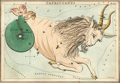 Capricorn is represented by a sea goat.