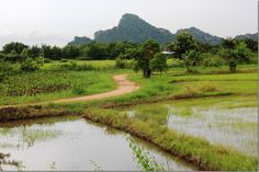 The Countryside near Hua Hin, Thailand - World Adventurers [12 photos]