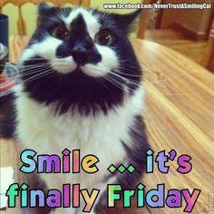 Finally Friday!!