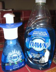 DIY Foaming Dish or Hand Soap