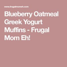 Blueberry Oatmeal Greek Yogurt Muffins - Frugal Mom Eh!