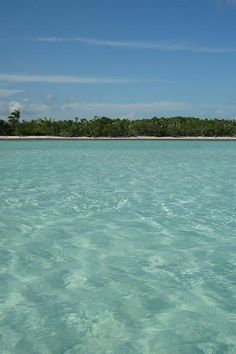 The pristine Sian Ka'an biosphere reserve on the Costa Maya in Mexico.