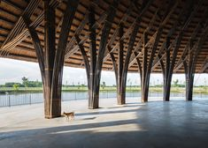 Thatch roof tops Vo Trong Nghia 's bamboo community centre