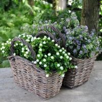 Kwiaty W Koszach Wiklinowych Wicker Wicker Baskets Decorative Wicker Basket