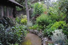 Garden Designers Roundtable: Our Home Gardens — Gossip in the Garden
