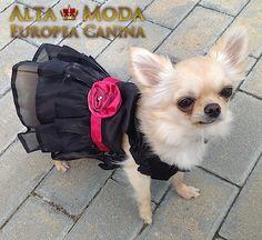 http://altamodaeuropeacanina.com/es/115-vestidos?p=2