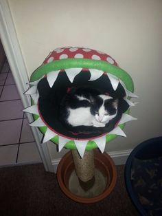 DIY Piranha plant - Super Mario cat bed/scratching post (I think I would fill in the pot maybe?)