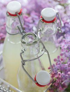 Limetten-Basilikum-Limonade - TRYTRYTRY