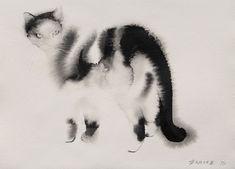 Черно-белая кошка.  Автор: Endre Penovac.