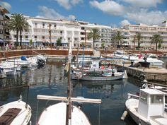 Hotel Cala Bona (Majorca) - Hotel Reviews - TripAdvisor