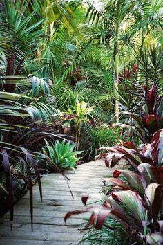 Tropical garden Ideas, tips and photos. Inspiration for your tropical landscaping. Tropical landscape plants, garden ideas and plans. Balinese Garden, Bali Garden, Diy Garden, Dream Garden, Garden Paths, Garden Villa, Bamboo Garden, Lush Garden, Tropical Garden Design