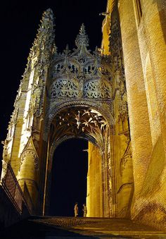 St. Cecile by night - Albi, Midi-Pyrenees, France