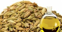 Health Benefits Of Fennel Oil‏