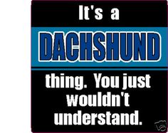 IT'S A DACHSHUND THING.  And if you have dachshunds, this makes total sense!