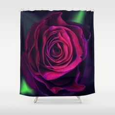 Velvet rose. Shower Curtain by #MaryBerg - $68.00 #showercurtains #society6 #rose #purple #bathroom #design #home