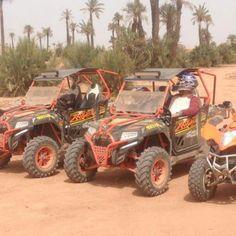 Best Quad Marrakech   Location quad Marrakech, dromadaire Marrakech