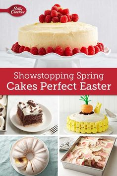 There's nothing like a gorgeous cake sitting in the middle of your Easter brunch table! These cakes please everyone from a big crowd, to just your immediate family. Easter Pie, Easter Brunch, Kid Desserts, Cheesecake Desserts, Spring Recipes, Easter Recipes, Brownie Cake, Brownies, Cake Recipes