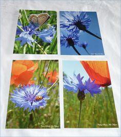 """Lot de 4 cartes postales 10x14cm avec des coquelicots et des bleuets""""Coquelicots et bleuets"""" : Cartes par celinephotosartnature Dandelion, Nature, Flowers, Plants, Photos, Etsy, Blueberry, Poppies, Handmade Gifts"""