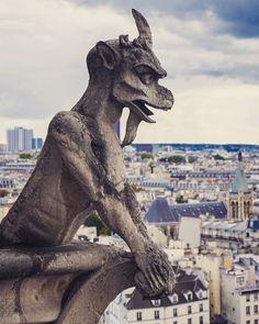 Gargouille - Notre Dame
