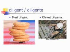 Des Adjectifs Français